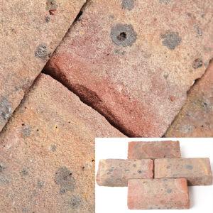65mm FLB Square Edge Multi Clay Paver
