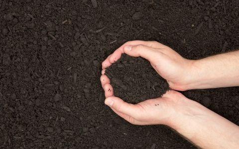 Tip top topsoil